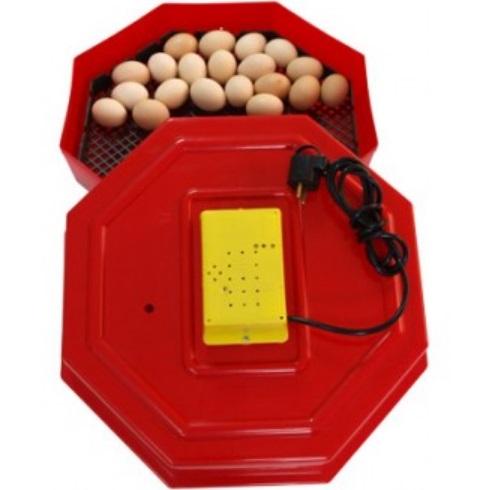 Incubator CLEO5, capacitate 60 oua
