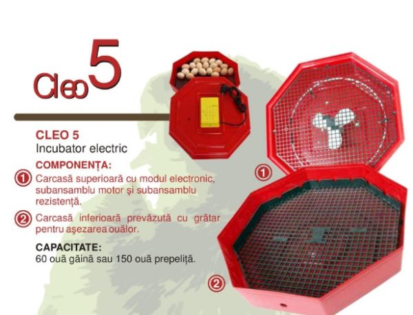 Incubator CLEO5 - Oua gaina, rata, gasca, prepelita, curca