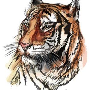 Tatuaje Temporare - Tatuaj Tigru, 21x15cm